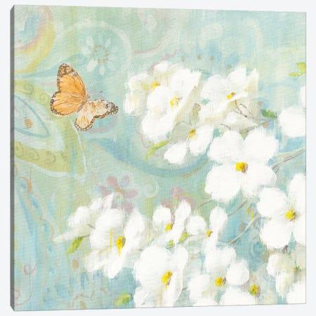 Spring Dream III Canvas Print #WAC4872} by Danhui Nai Canvas Art