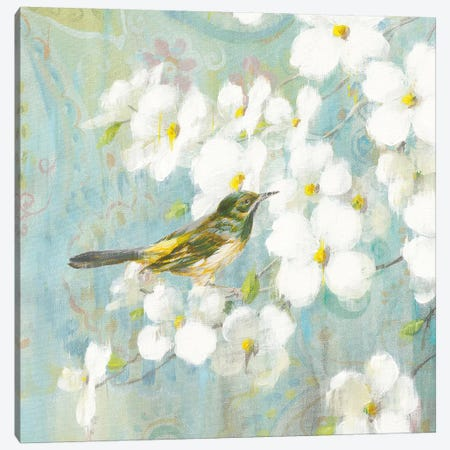 Spring Dream V Canvas Print #WAC4877} by Danhui Nai Canvas Print