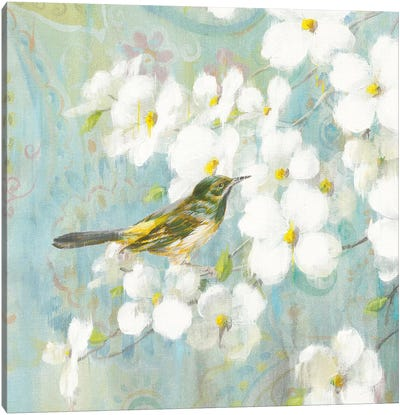 Spring Dream V Canvas Art Print