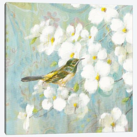 Spring Dream V Canvas Print #WAC4877} by Danhui Nai Canvas Print