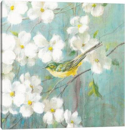 Spring Dream VI Canvas Art Print