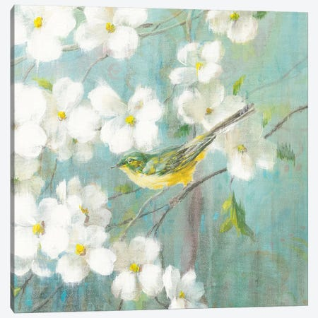 Spring Dream VI Canvas Print #WAC4878} by Danhui Nai Canvas Artwork