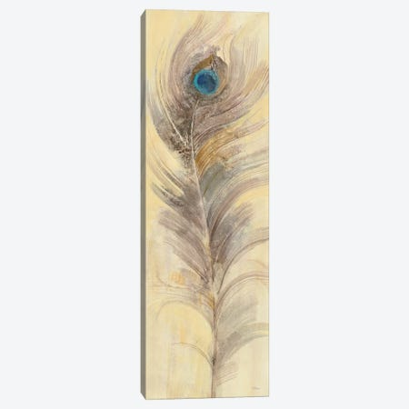 Blue Eyed Feathers III Canvas Print #WAC4885} by Albena Hristova Canvas Artwork