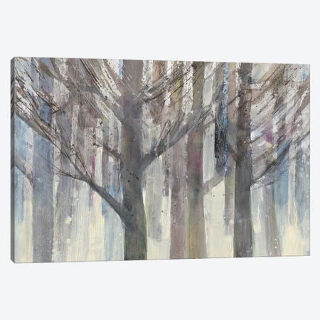 Forest Light Canvas Print #WAC4886} by Albena Hristova Canvas Artwork