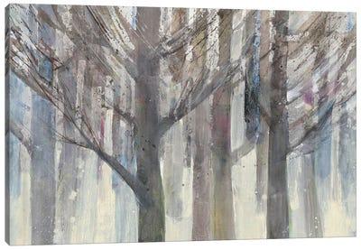 Forest Light Canvas Art Print