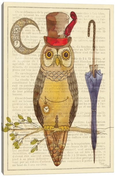 Steampunk Owl I Canvas Print #WAC490