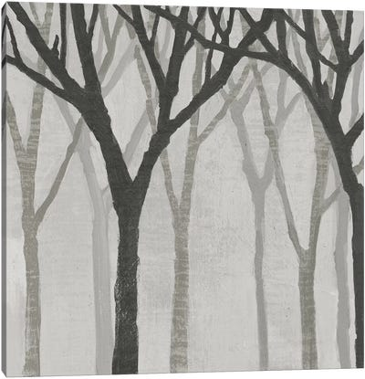 Spring Trees Greystone I Canvas Art Print