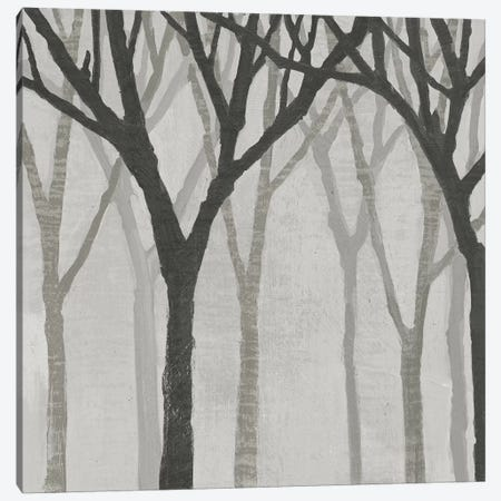 Spring Trees Greystone I Canvas Print #WAC4912} by Kathrine Lovell Canvas Print