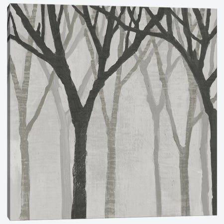 Spring Trees Greystone I Canvas Print #WAC4912} by Kathrine Lovell Canvas Print