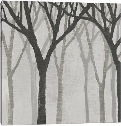 Spring Trees Greystone I Canvas Art Print