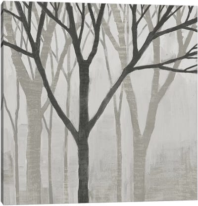 Spring Trees Greystone II Canvas Art Print