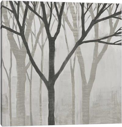 Spring Trees Greystone II Canvas Art Print