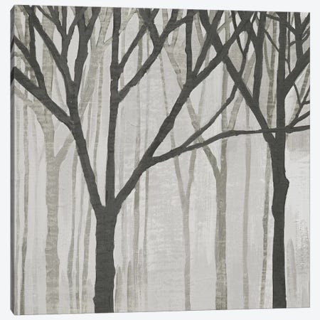 Spring Trees Greystone III Canvas Print #WAC4914} by Kathrine Lovell Canvas Wall Art