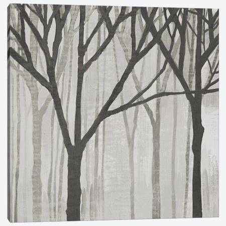 Spring Trees Greystone III Canvas Print #WAC4914} by Kathrine Lovell Canvas Wall Art