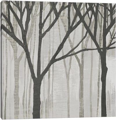 Spring Trees Greystone III Canvas Art Print