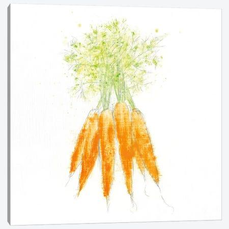 Garden Delight VIII Canvas Print #WAC4922} by Emily Adams Canvas Wall Art