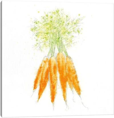 Garden Delight VIII Canvas Art Print