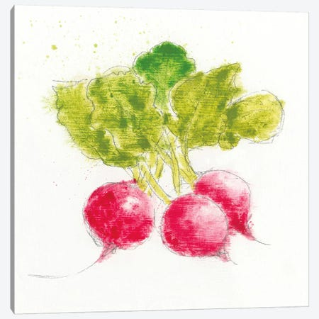 Garden Delight X Canvas Print #WAC4923} by Emily Adams Canvas Art