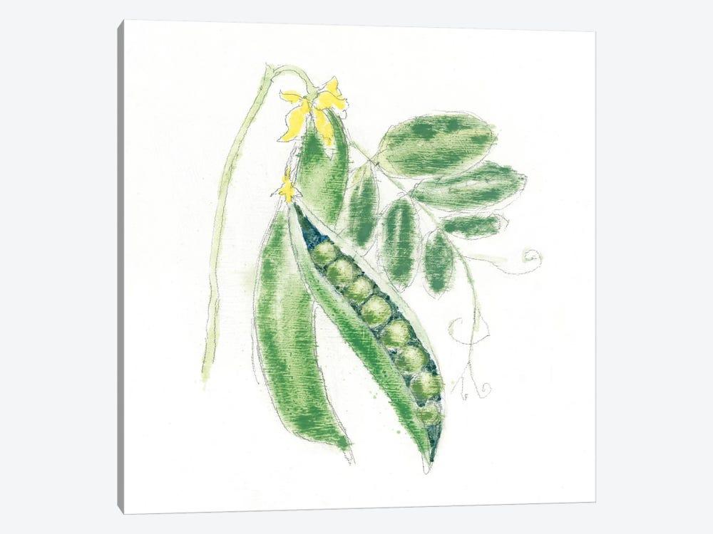 Garden Delight XI by Emily Adams 1-piece Canvas Artwork