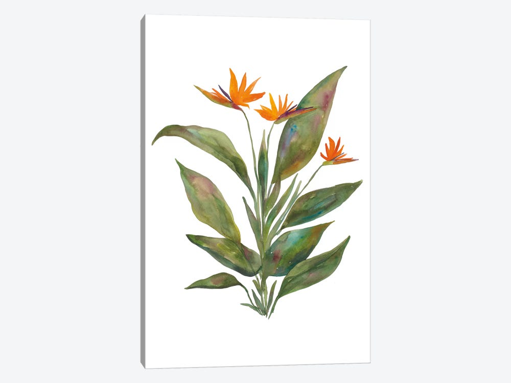 Bright Bromeliad by Wild Apple Portfolio 1-piece Art Print