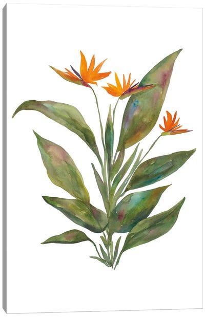 Bright Bromeliad Canvas Art Print