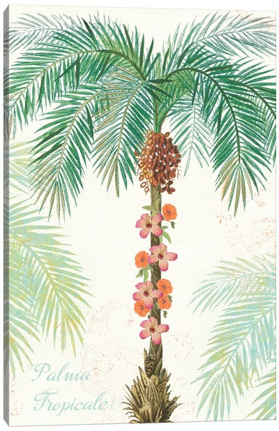 Flamingo Tropicale III Canvas Art Print