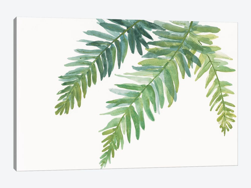 Ferns I 1-piece Canvas Wall Art