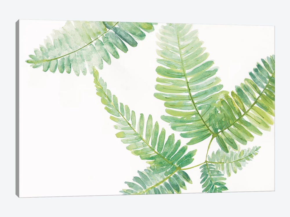 Ferns II 1-piece Canvas Print