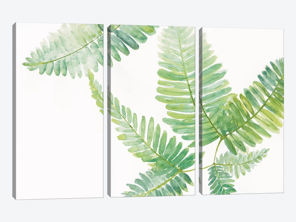 Ferns II 3-piece Art Print