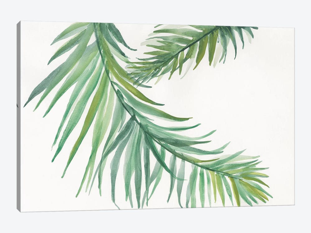 Ferns IV by Chris Paschke 1-piece Canvas Art