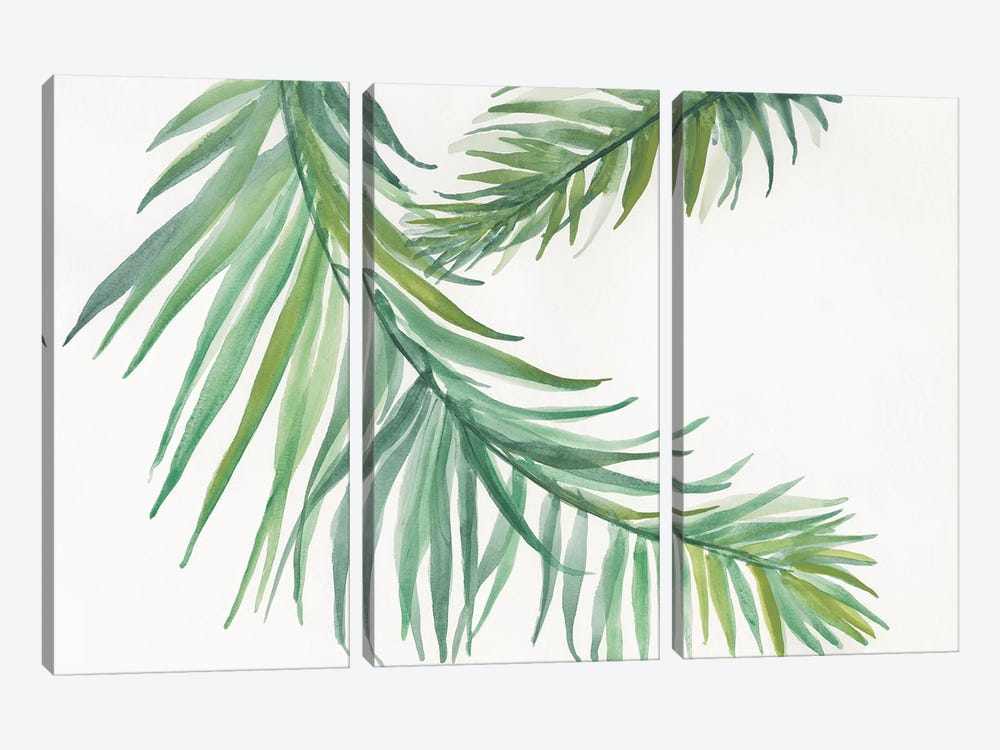 Ferns IV by Chris Paschke 3-piece Canvas Art