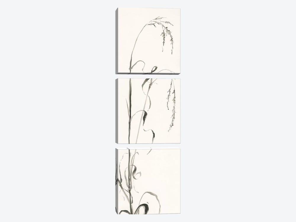 Gray Grasses III by Chris Paschke 3-piece Canvas Art Print