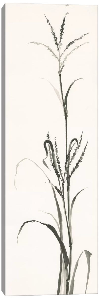 Gray Grasses IV Canvas Art Print