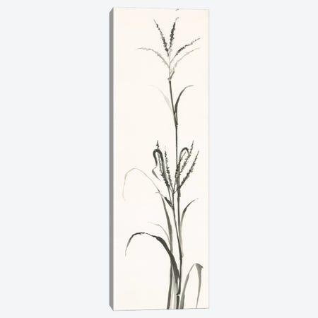 Gray Grasses IV 3-Piece Canvas #WAC4993} by Chris Paschke Canvas Art Print