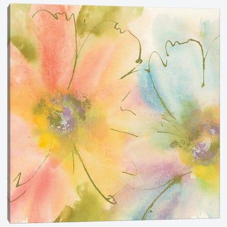 Rainbow Cosmos I Canvas Print #WAC4994} by Chris Paschke Canvas Wall Art