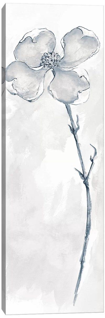 Solitary Dogwood III Canvas Print #WAC4999