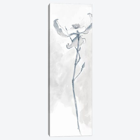 Solitary Dogwood IV 3-Piece Canvas #WAC5000} by Chris Paschke Canvas Wall Art