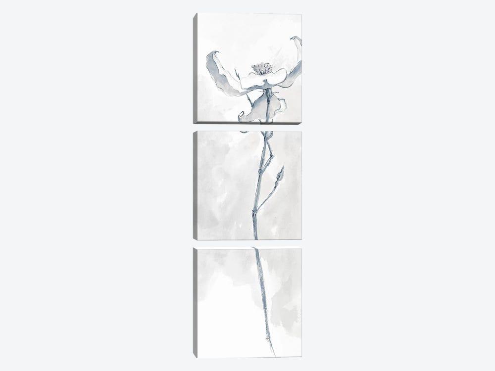 Solitary Dogwood IV by Chris Paschke 3-piece Canvas Art