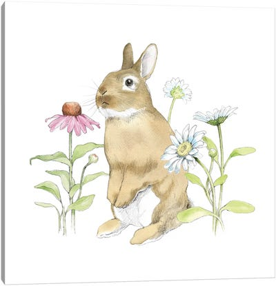 Wildflower Bunnies IV Canvas Art Print