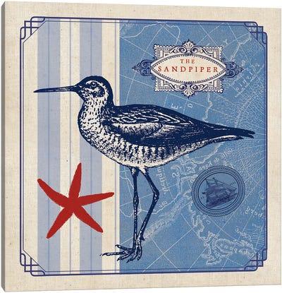 Sea Bird II Canvas Print #WAC5064