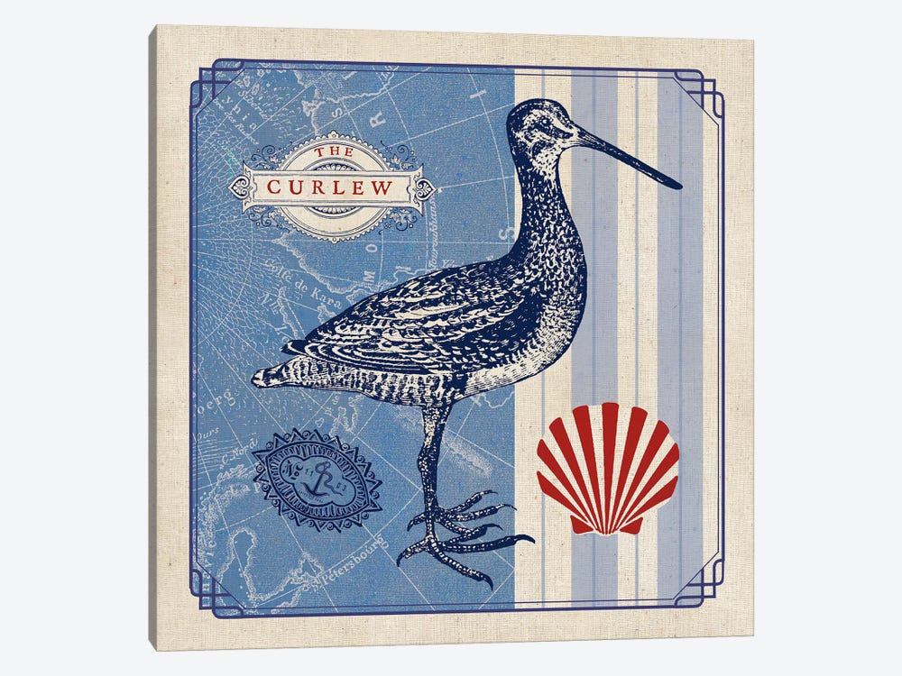 Sea Bird III by Studio Mousseau 1-piece Canvas Print