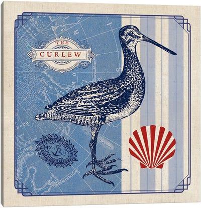 Sea Bird III Canvas Art Print