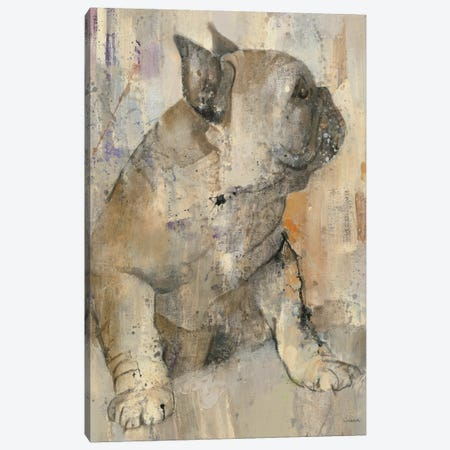 Duke Canvas Print #WAC5074} by Albena Hristova Canvas Artwork