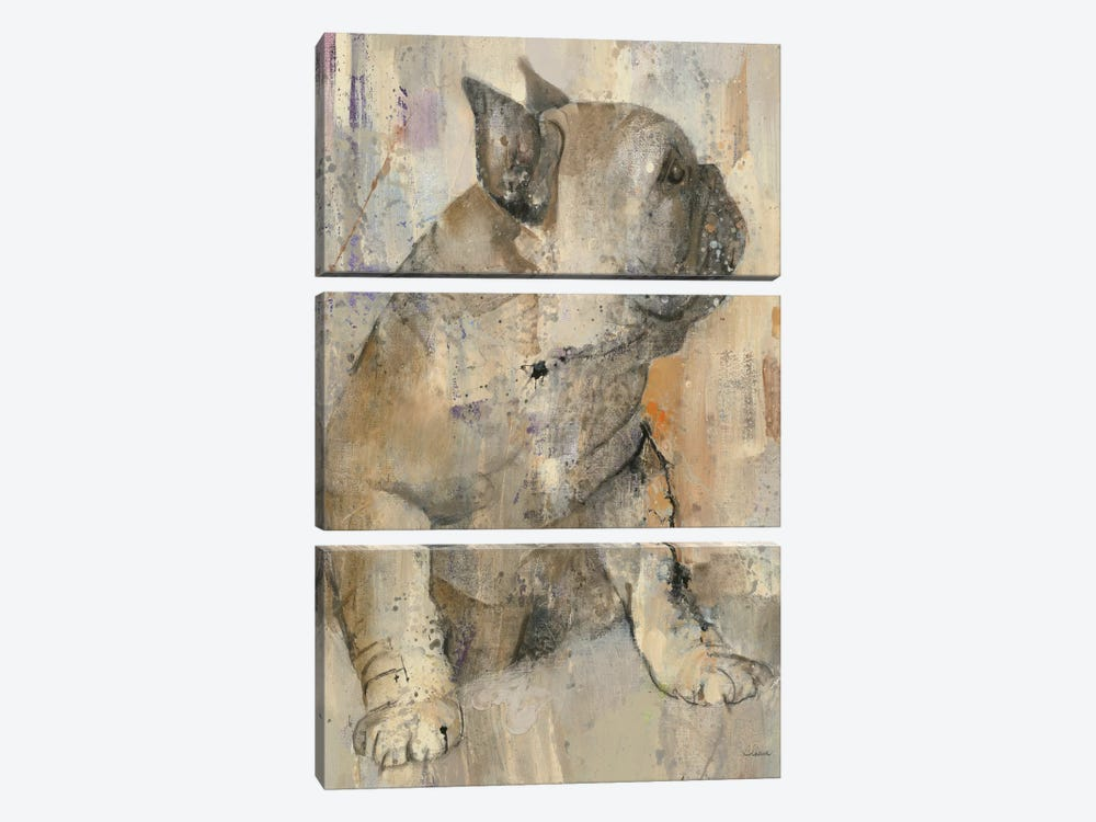 Duke by Albena Hristova 3-piece Canvas Art Print