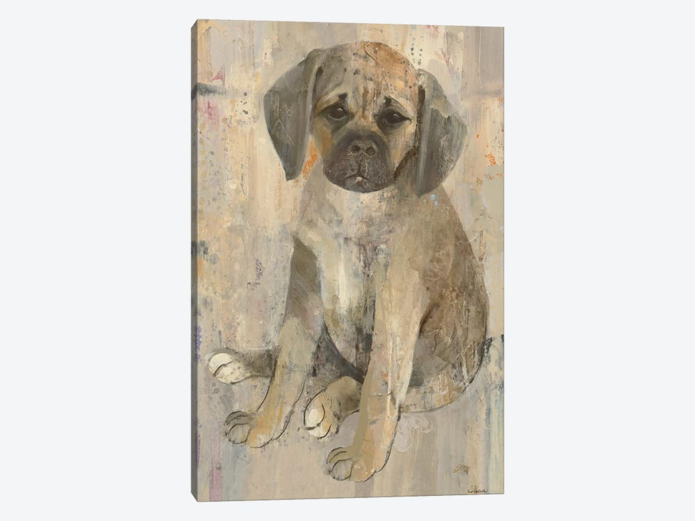 Paco by Albena Hristova 1-piece Canvas Art
