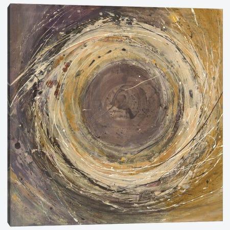 Wooden Rings Canvas Print #WAC5087} by Albena Hristova Art Print