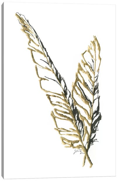 Gilded Raven Feather Canvas Print #WAC5120