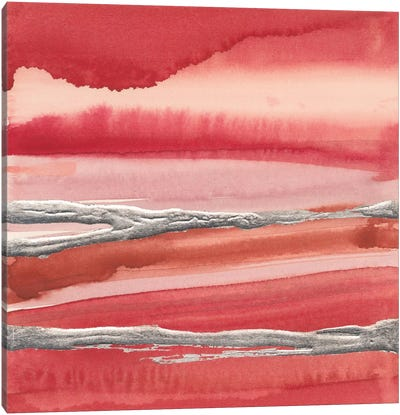 Silver Marsh Canvas Print #WAC5134