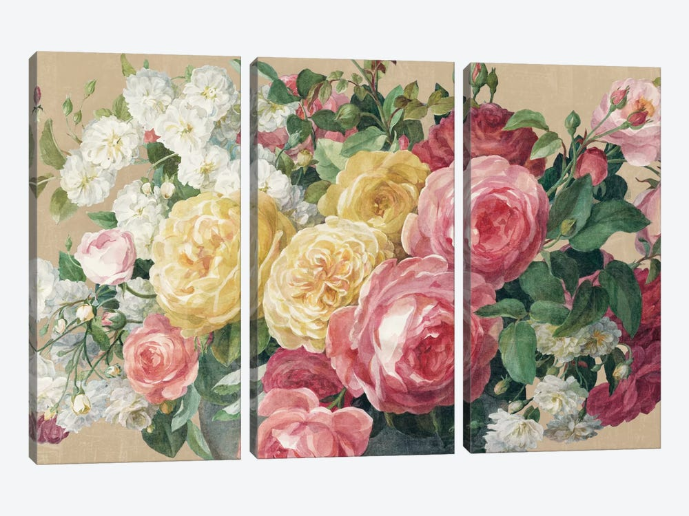 Antique Roses In Zoom by Danhui Nai 3-piece Canvas Art