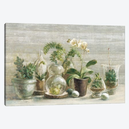 Greenhouse Orchids On Wood II Canvas Print #WAC5147} by Danhui Nai Canvas Artwork